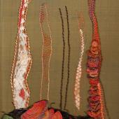 Fungi with Jan Pilgrim
