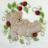 Little Lullaby Bear by Jan Kerton