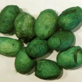 Silk Dyed Cocoons 20